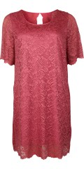 Zizzi - Emelanie lace dress with 1/2 sleeves and nice look to the back