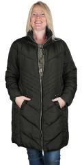 Cassiopeia - Dicthe coat