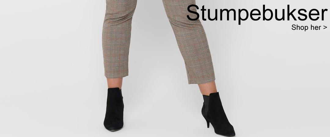 Stump.jpg